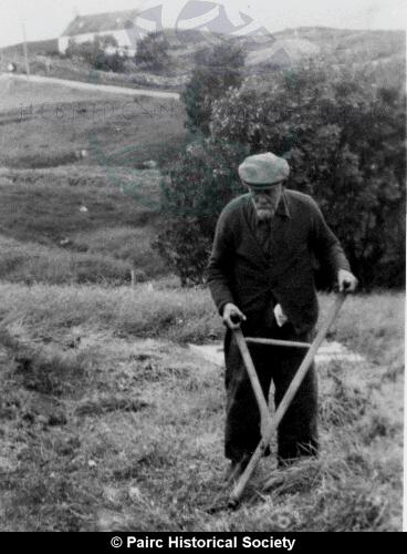 Scything the Hay